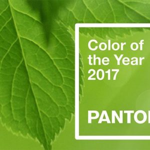 Pantone Picks Color of the Year: Greenery