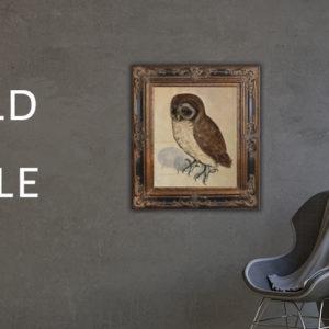 Wildlife in Art